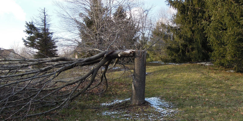 [image] 6 Common Spanning Tree Mistakes and How to Avoid Them