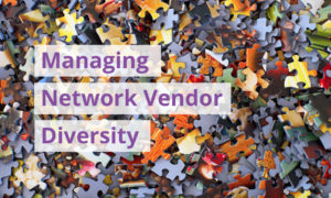 [image] Managing Network Vendor Diversity: The MSP Challenge