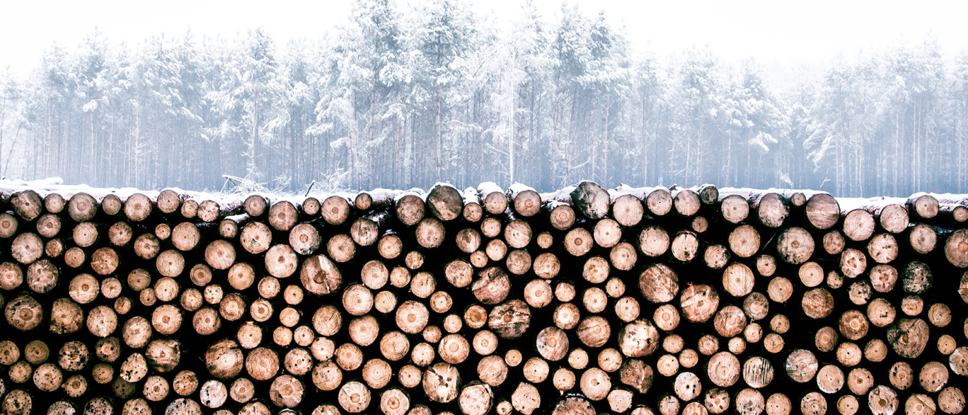5 Great Reasons to Store and Analyze Centralized Logs