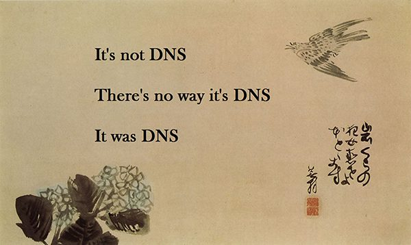 securing-your-dns-meme